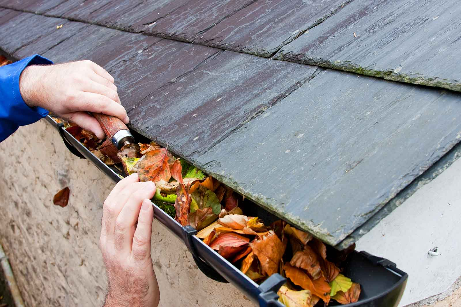 We Can Clear Office and Home Gutters call 0800 018 5550 ServiceMaster Clean Devon