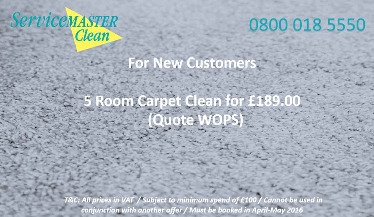 5 Room Carpet Clean Offer Torbay Exeter Devon