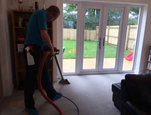 If you have a new Torbay home then you may need help carpet cleaning