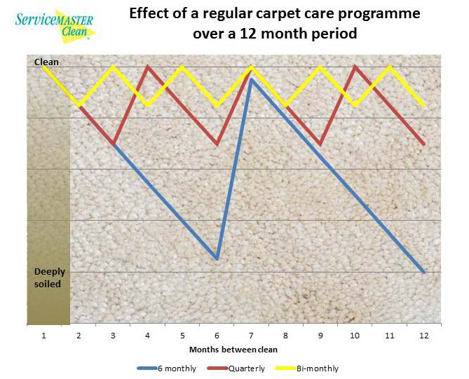 benefits and effects of regular carpet cleaning over a 12month period.