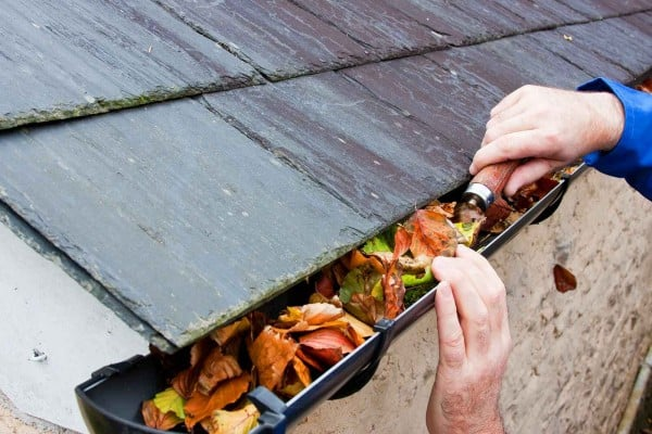 Clean your gutters Torbay, Newton Abbot and South Devon, local gutter cleaners