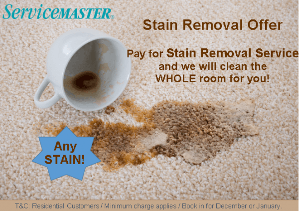 Stain removal service rest free Dec16 Jan17