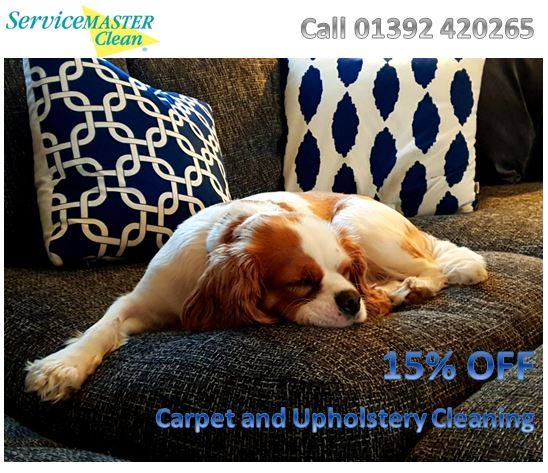 Exeter Carpet and Upholstery Cleaning offer