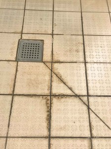 Stains to be removed from floor
